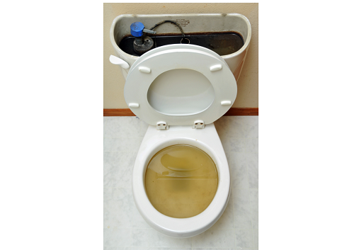 Now What? | Clogged Toilet