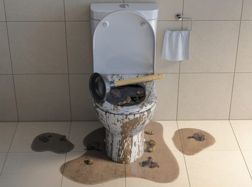 A Toilet Is Not a Trash Can | Billy the Sunshine Plumber