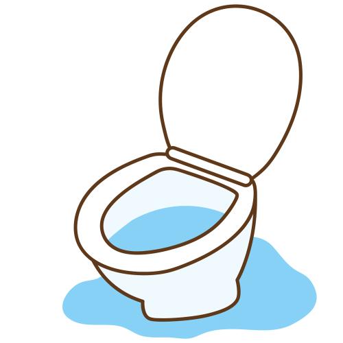 Leaky Toilet | Billy the Sunshine Plumber
